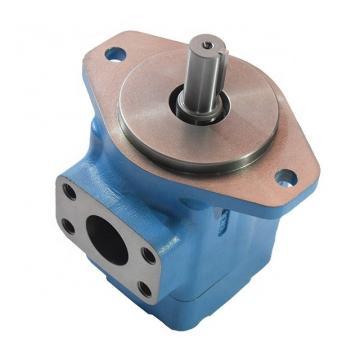 Vickers PV046R1D3CDNMRW+PV046R1E3T1NMR Piston Pump PV Series